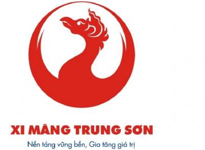 Cong_ty_TNHH_xi_mang_Trung_Son